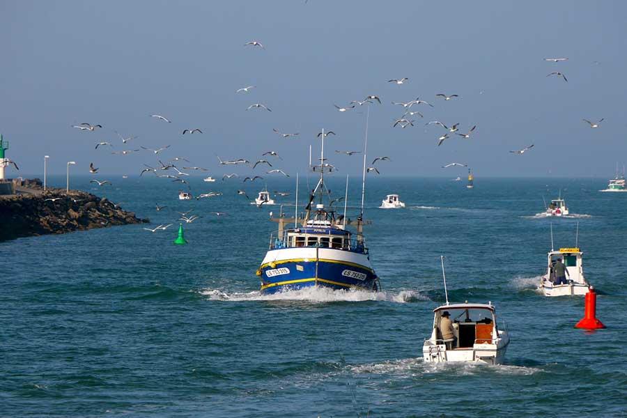 Réservez votre location de bateau à Saint Gilles Croix de Vie